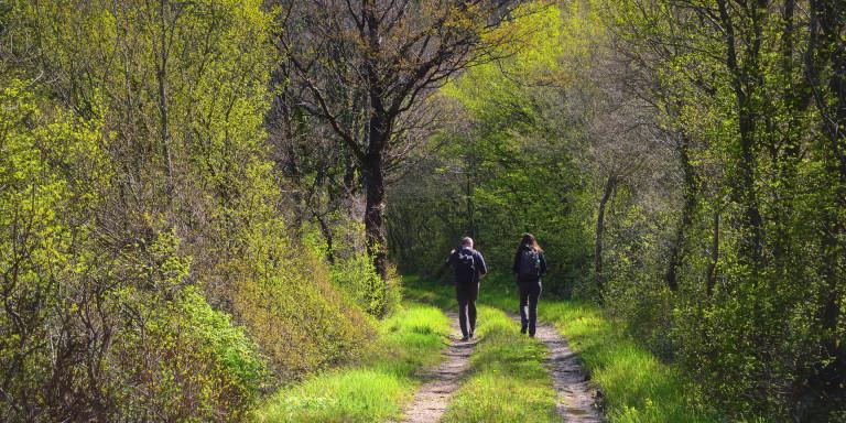 Diverse workshops - Natuurbegraafplaats Eygelshof
