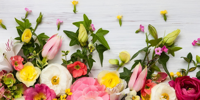Bloemen aan huis Bloemsierkunst Tamara