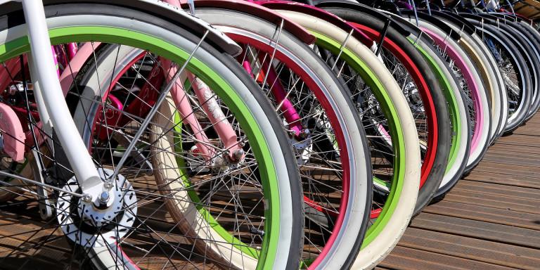Fietsenwinkel Bike Totaal Brandhof Bikes