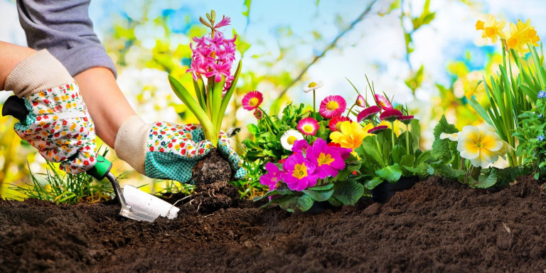Klussen, tuinonderhoud, verhuizen + opruimservice - Uw zorg = Onze zorg